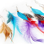 Fashion Feather Earring, mixed color/sizes/style, exquisite style, classical, shop them now to catch the rare chance, 9-27cm, Sold by Pair