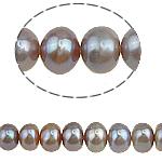 Button Beads ujërave të ëmbla kulturuar Pearl, Pearl kulturuar ujërave të ëmbla, 7-8mm, : 0.8mm, :15Inç, 47PC/Fije floku,  15Inç,