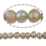 Barok Beads kulturuar Pearl ujërave të ëmbla, Pearl kulturuar ujërave të ëmbla, Round, 2-3mm, : 0.5mm, :15Inç, 127PC/Fije floku,  15Inç,