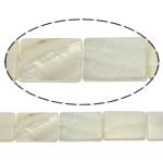 Beads Natyrore White Shell, Drejtkëndësh, asnjë, e bardhë, 18x25x3mm, : 2mm, :15.5Inç, 16PC/Fije floku,  15.5Inç,