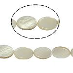 Beads Natyrore White Shell, Oval Flat, asnjë, e bardhë, 13x18x4mm, : 2mm, :15.5Inç, 23PC/Fije floku,  15.5Inç,