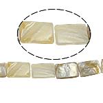 Beads Natyrore Shell Verdha, Drejtkëndësh, asnjë, e bardhë, 16x24x3mm, : 2mm, :15.5Inç, 16PC/Fije floku,  15.5Inç,
