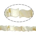 Beads Natyrore White Shell, asnjë, e bardhë, 15x20x2.50mm, : 2mm, :15.5Inç, 20PC/Fije floku,  15.5Inç,