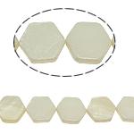 Beads Natyrore White Shell, Gjashtëkëndësh, asnjë, e bardhë, 11x13x3mm, : 2mm, :15.5Inç, 30PC/Fije floku,  15.5Inç,