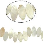 Beads Natyrore White Shell, Syri kali, asnjë, e bardhë, 8x16x3mm, : 2mm, :15.5Inç, 56PC/Fije floku,  15.5Inç,