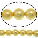 Detit të Jugut Beads Shell, Jug Deti Shell, Round, asnjë, i verdhë, 10mm, : 0.5mm, :16Inç, 39PC/Fije floku,  16Inç,