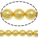 Detit të Jugut Beads Shell, Jug Deti Shell, Round, asnjë, i verdhë, 14mm, : 1mm, :16Inç, 29PC/Fije floku,  16Inç,