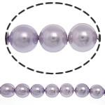 Detit të Jugut Beads Shell, Jug Deti Shell, Round, asnjë, rozë, 8mm, : 0.5mm, :16Inç, 53PC/Fije floku,  16Inç,