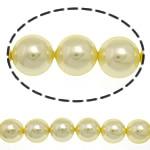 Detit të Jugut Beads Shell, Jug Deti Shell, Round, asnjë, i verdhë, 8mm, : 0.5mm, :16Inç, 50PC/Fije floku,  16Inç,