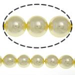Detit të Jugut Beads Shell, Jug Deti Shell, Round, asnjë, i verdhë, 14mm, : 1mm, :15.5Inç, 29PC/Fije floku,  15.5Inç,