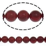 Detit të Jugut Beads Shell, Jug Deti Shell, Round, asnjë, i kuq, 8mm, : 0.5mm, :16Inç, 49PC/Fije floku,  16Inç,