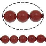 Detit të Jugut Beads Shell, Jug Deti Shell, Round, asnjë, i kuq, 14mm, : 1mm, :16Inç, 29PC/Fije floku,  16Inç,