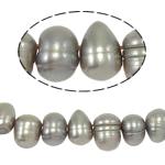 Barock kultivierten Süßwassersee Perlen, Natürliche kultivierte Süßwasserperlen, grau, Grade A, 6-7mm, Bohrung:ca. 0.8mm, verkauft per 14.5 ZollInch Strang