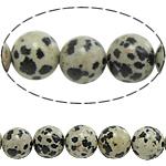 Beads Dalmatian, Round, natyror, 12mm, : 1.5mm, : 15.5Inç, 10Fillesat/Shumë,  Shumë