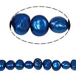 Barok Beads kulturuar Pearl ujërave të ëmbla, Pearl kulturuar ujërave të ëmbla, 5-6mm, : 0.8mm, :14.5Inç,  14.5Inç,