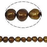 Barok Beads kulturuar Pearl ujërave të ëmbla, Pearl kulturuar ujërave të ëmbla, 7-8mm, : 0.8mm, :15Inç,  15Inç,