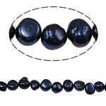Barok Beads kulturuar Pearl ujërave të ëmbla, Pearl kulturuar ujërave të ëmbla, 7-8mm, : 0.8mm, :14.5Inç,  14.5Inç,