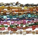 Beads Natyrore Colored Shell, Predhë, Drejtkëndësh, asnjë, ngjyra të përziera, 9-12mm, : 1mm, :15Inç, 10Fillesat/Qese,  Qese