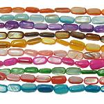 Beads Natyrore Colored Shell, Predhë, Drejtkëndësh, asnjë, ngjyra të përziera, 5-8mm, : 1mm, :15Inç, 10Fillesat/Qese,  Qese