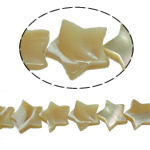 Sea Shell Beads, Star, original color, 10x3mm, Hole:Approx 1mm, 46PCs/Strand, Sold Per 15.5 Inch Strand