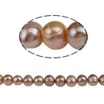 Barok Beads kulturuar Pearl ujërave të ëmbla, Pearl kulturuar ujërave të ëmbla, 10-11mm, :15Inç,  15Inç,