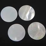 Cabochons Shell, White Shell, Round Flat, e bardhë, 10.5-11.5x10.5-11.5x1-1.5mm, 100PC/Qese,  Qese