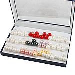 Detit të Jugut Vath Shell, Jug Deti Shell, Round, asnjë, asnjë, ngjyra të përziera, 14mm, 30mm, 36Çiftet/Kuti,  Kuti