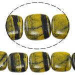 Regenbogen Venen Perlen, bunte Venen Stein, Quadrat, natürlich, 19x19x6.50mm, Bohrung:ca. 1.5mm, ca. 20PCs/Strang, verkauft per ca. 15.5 ZollInch Strang