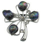Pearl ujërave të ëmbla karficë, Pearl kulturuar ujërave të ëmbla, with Tunxh, Lule, e zezë, 46x41x17mm,  PC