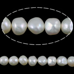 Barok Beads kulturuar Pearl ujërave të ëmbla, Pearl kulturuar ujërave të ëmbla, e bardhë, AA, 9-10mm, : 1mm, :15.5Inç,  15.5Inç,