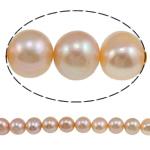 Round Beads kulturuar Pearl ujërave të ëmbla, Pearl kulturuar ujërave të ëmbla, natyror, rozë, Një, 10-11mm, : 1mm, :15Inç,  15Inç,