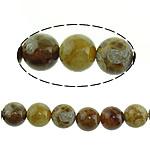 Beads Natyrore Fosile agat, Antique agat, Round, 10mm, : 1mm, : 15.5Inç, 5Fillesat/Shumë,  Shumë