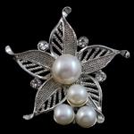 Pearl ujërave të ëmbla karficë, Pearl kulturuar ujërave të ëmbla, with Tunxh, Lule, e bardhë, 46x47x16mm,  PC