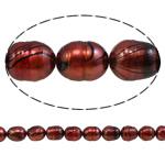 Rajs Beads ujërave të ëmbla kulturuar Pearl, Oriz, natyror, i kuq, Një, 8-9mm, : 0.8mm, :15Inç,  15Inç,