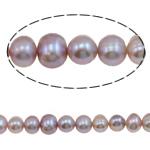Round Beads kulturuar Pearl ujërave të ëmbla, Pearl kulturuar ujërave të ëmbla, natyror, vjollcë, Një, 8-9mm, : 0.8mm, :14.5Inç,  14.5Inç,