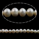 Round Beads kulturuar Pearl ujërave të ëmbla, Pearl kulturuar ujërave të ëmbla, natyror, e bardhë, Një, 8-9mm, : 0.8mm, :14.5Inç,  14.5Inç,