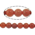Beads Natyrore Coral, Grass Coral, Round, sintetik, i kuq, 4mm, : 1mm, : 16Inç, 5Fillesat/Shumë,  Shumë