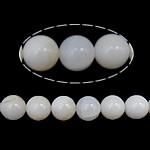 Riesenmuscheln Perlen, Riesenmuschel, rund, synthetisch, transluzent, weiß, 6mm, Bohrung:ca. 1mm, Länge:ca. 16 ZollInch, 10SträngeStrang/Menge, 68PCs/Strang, verkauft von Menge