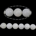 Beads Giant molusqe, Melodik Giant, Round, sintetik, i tejdukshëm, e bardhë, 10mm, : 1mm, : 16Inç, 10Fillesat/Shumë,  Shumë