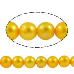 Barok Beads kulturuar Pearl ujërave të ëmbla, Pearl kulturuar ujërave të ëmbla, Round, i lyer, i verdhë, 8-9mm, : 1mm, :15.7Inç,  15.7Inç,