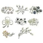 Pearl ujërave të ëmbla karficë, Pearl kulturuar ujërave të ëmbla, Shape përziera, ngjyra të përziera, 38.8-65x22.5-51.5x8-23mm, 10PC/Shumë,  Shumë