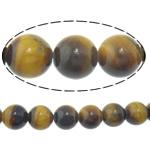 Syri Tiger Beads, Round, natyror, 10mm, : 2mm, :15.8Inç, 5Fillesat/Shumë,  Shumë