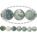 Beads agat Tree, Tree agat, Round, 6mm, : 1.2mm, :15.5Inç, 10Fillesat/Shumë,  Shumë