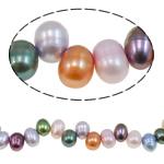 Rajs Beads ujërave të ëmbla kulturuar Pearl, Pearl kulturuar ujërave të ëmbla, Oriz, i lyer, ngjyra të përziera, Një, 6-7mm, : 1mm, :15.0Inç,  15.0Inç,
