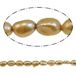 Barok Beads kulturuar Pearl ujërave të ëmbla, Pearl kulturuar ujërave të ëmbla, i lyer, i verdhë, 5-6mm, : 1mm, :15.4Inç,  15.4Inç,