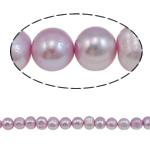 Barok Beads kulturuar Pearl ujërave të ëmbla, Pearl kulturuar ujërave të ëmbla, i lyer, 8-9mm, : 1mm, :15.7Inç,  15.7Inç,