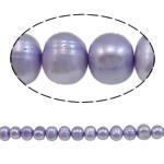 Barok Beads kulturuar Pearl ujërave të ëmbla, Pearl kulturuar ujërave të ëmbla, Round, i lyer, purpurtë drita, 8-9mm, : 1mm, :15.7Inç,  15.7Inç,