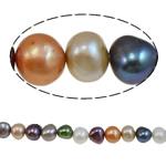 Barok Beads kulturuar Pearl ujërave të ëmbla, Pearl kulturuar ujërave të ëmbla, i lyer, ngjyra të përziera, 9-10mm, : 1mm, :15.4Inç,  15.4Inç,