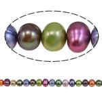 Barok Beads kulturuar Pearl ujërave të ëmbla, Pearl kulturuar ujërave të ëmbla, i lyer, ngjyra të përziera, 5-6mm, : 1mm, :15.4Inç,  15.4Inç,