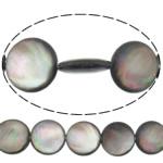 Beads Zi Shell, Round Flat, natyror, asnjë, asnjë, 14x14x4mm, : 0.7mm, :15.5Inç, 5Fillesat/Shumë,  Shumë